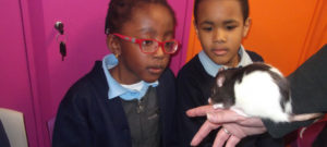 Year 1 met some friendly critters